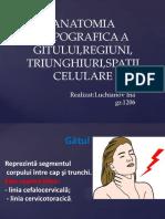 Anatomia Clinică a Gâtului 20151