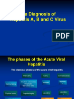 The Dx of Hepatitis -patklin.ppt
