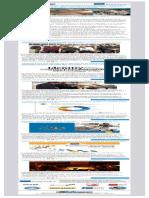 Proyecto 3MVet (Newsletter 3)