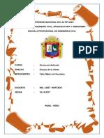 Ensayo-de-Veleta.docx