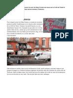 toulouse_octobre_2015__pour_remy_fraisse.pdf