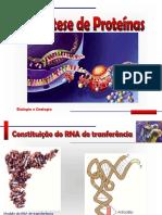 1.Síntese_Proteica