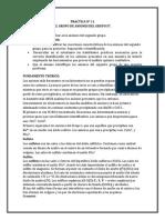 practica N°11 lab. analitica