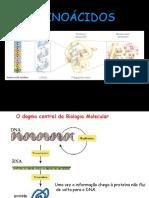 Aula 2 Aminoacidos 1