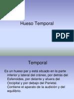 Hueso Temporal (1)