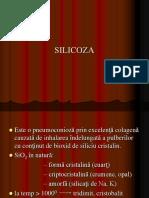 176_SILICOZA