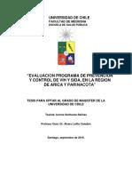 Tesis_Ivonne+Sanhueza.pdf