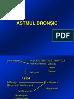 Astm bronsic.ppt