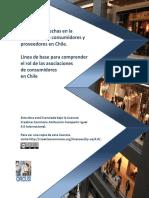 Análisis de Brechas en la relación entre consumidores y proveedores en Chile. Una Línea base para comprender el rol de las asociaciones de consumidores en Chile