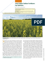 Co-granulated Elemental Sulfur Sulfate Fertilizer and Their Role in Crop...