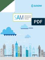 Administracion Activos Software-2016