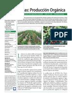fresas_produccion_organica_argentina.pdf