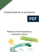 Productividad de un ecosistema