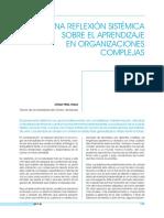 EL APRENDIZAJE EN ORGANIZACIONES COMPLEJAS.pdf