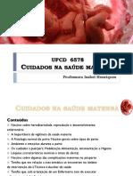 PowerPoint Cuidados Na Saúde Materna