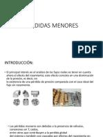 PÉRDIDAS-MENORES