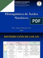 96479658 i Acidos Nucleicos