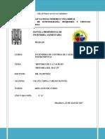 CALIDAD Y HACCP HISTORIA.docx
