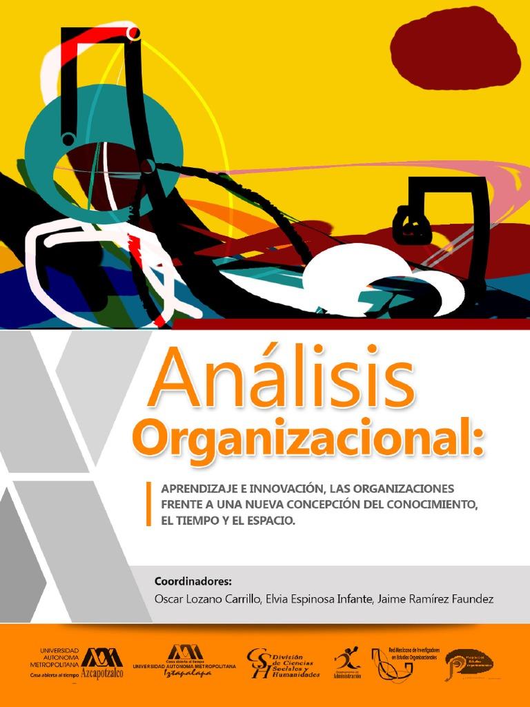 f47aa121bcb85 Analisis Organizacional Uam