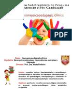 CENSUPEG Neuropsicopedagogia Clínica Brusque