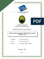 Yenice Practicas Profesionales Vv
