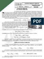 Química - Pré-Vestibular Impacto - Entalpia - Formação e Combustão