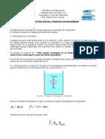 Principio de Arquimedes CON SIMULADOR 2013 INSAL