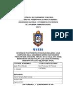 Informe de Pasantias UNEFA APURE