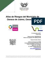 INFORME_FINAL_OAXACA.pdf