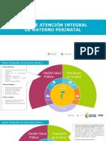 3.1 Diagrama Gsp Rias Materno - Perinatal