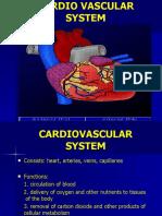 4. Cardiovascular