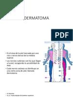 Dermatoma Expo 2017