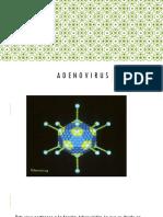 Adenovirus Completo