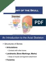 Anatomy of the Skull 2017
