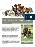6. What is Animal Breeding