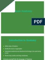 Introduction Human Anatomy