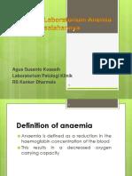 anemiapdspatklin-120327202753-phpapp02