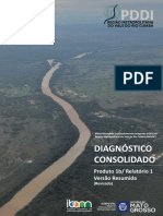 Pddi Diagnostico-resumido Site