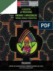 Programa Medicinas Andinas y Amazonicas 2017