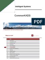 06_Intelligent_Systems-CommonKADS.pdf
