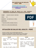 Exp.problematica de Salud Del Adulto Mayor. Td. in.