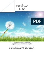Padrinho Ze Ricardo - Luz - Tablet.pdf