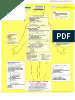 secondarysurvey man revised Jan08.doc