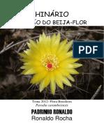 Padrinho Ronaldo - Cancao Do Beija-Flor