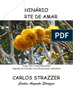 Carlos Strazzer