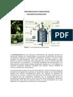 Bioreactores de Bucle, Tanque Agitado