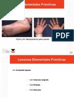 Lesiones dérmicas