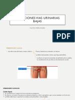 Infecciones Vias Urinarias Bajas