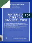 230439606-Sintesis-de-Derecho-Procesal-Civil-Rene-Jorquera-Lorca.pdf