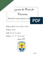 GOMA ECOLÓGICA DE ALMIDÓN DE YUCA.docx